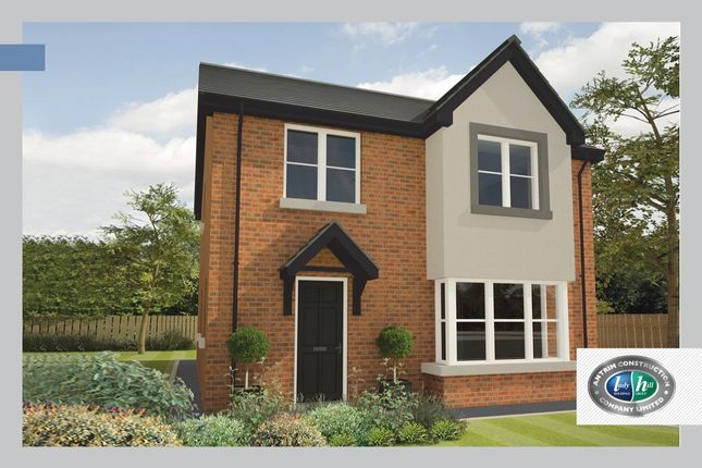 Thumbnail Detached house for sale in Porter Green, Ballyhampton Road, Larne