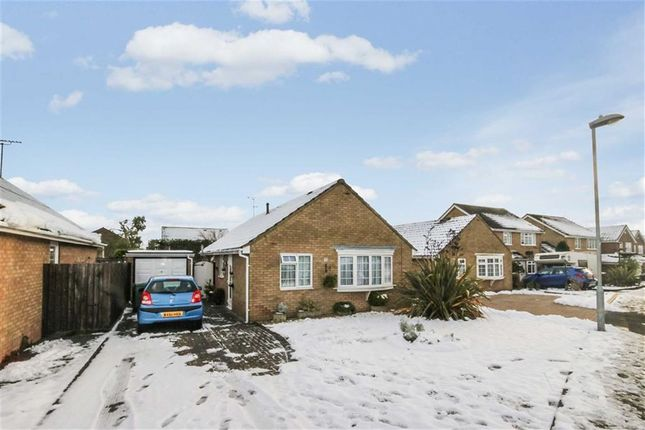 Thumbnail Detached bungalow for sale in Kingsley Avenue, Royal Wootton Bassett, Wiltshire