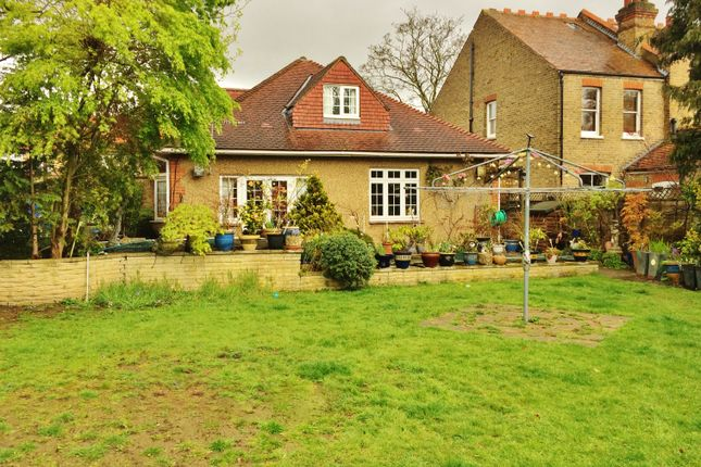 Thumbnail Detached bungalow to rent in Cedar Avenue, Whitton, Twickenham