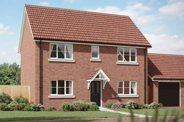 Thumbnail Detached house for sale in Pyes Close, Walsham Le Willows