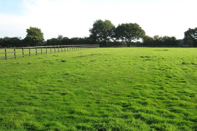 Thumbnail Land for sale in Little Totham, Maldon