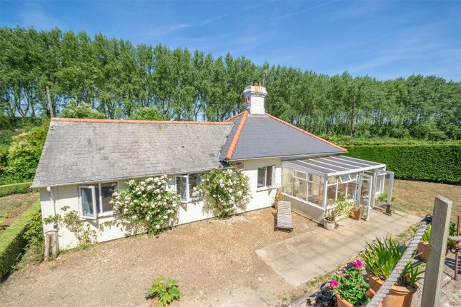 Thumbnail Detached house for sale in Main Road, Holkham, Wells-Next-The-Sea