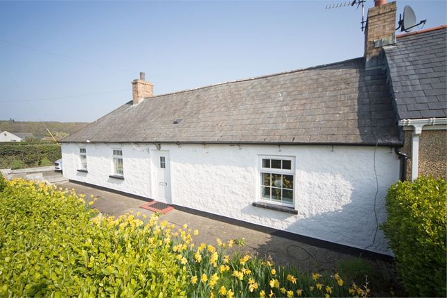 Thumbnail Cottage for sale in Newtownards Road, Greyabbey, Newtownards, County Down