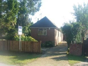 Thumbnail Bungalow to rent in Rydes Hill Road, Guildford