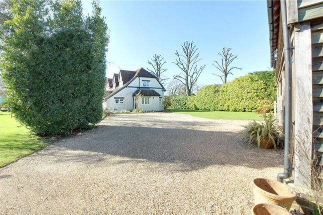 Thumbnail Detached house for sale in Rectory Lane, Bentley, Farnham, Hampshire