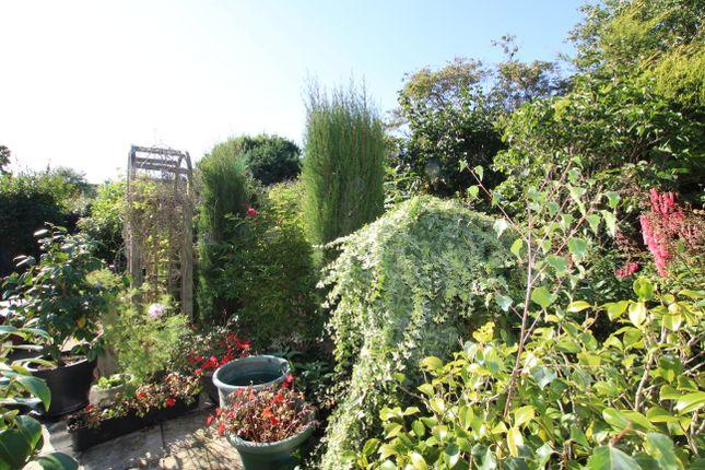 Garden of Gallows Lane, Westham BN24