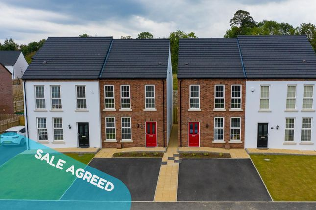 Thumbnail Semi-detached house for sale in The Barberton At The Hillocks, Derry / Londonderry