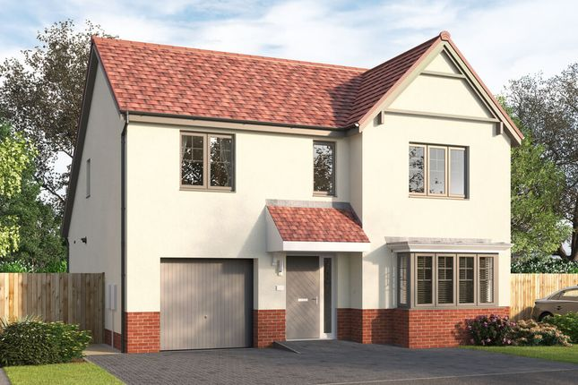 """Thumbnail Detached house for sale in """"The Skybrook"""" at Stirling Road, Larbert"""