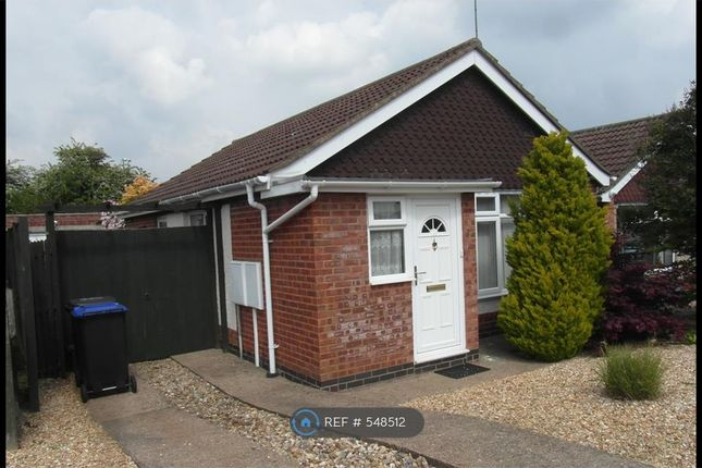 Thumbnail Bungalow to rent in Oundle Drive, Northampton