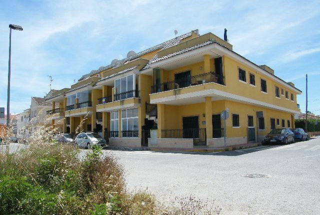 Don Pelayo, Daya Vieja, Alicante, Valencia, Spain