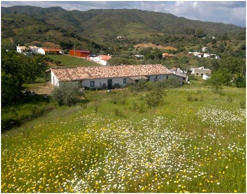 3 bed farmhouse for sale in Cf310, Santa Catarina Da Fonte Do Bispo, Portugal