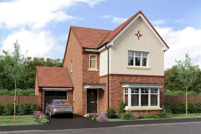 "Thumbnail Detached house for sale in ""The Esk"" at Sadberge Road, Middleton St. George, Darlington"