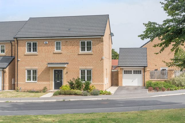 Thumbnail Detached house for sale in Summerhouse Drive, Sheffield