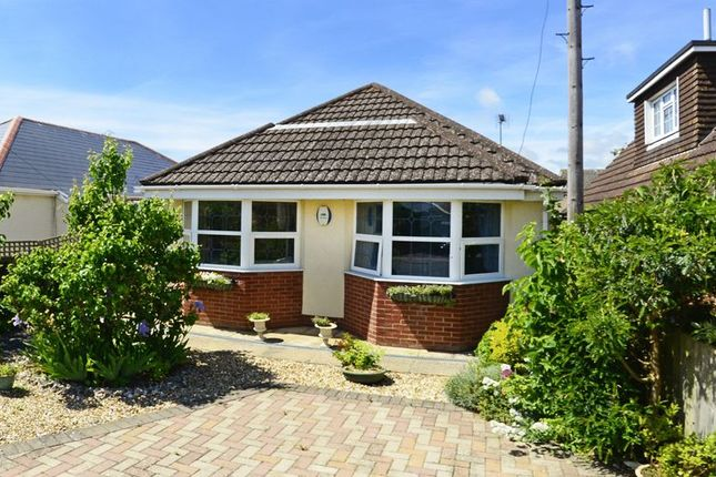Thumbnail Detached bungalow for sale in Chalk Pit Lane, Wool, Wareham