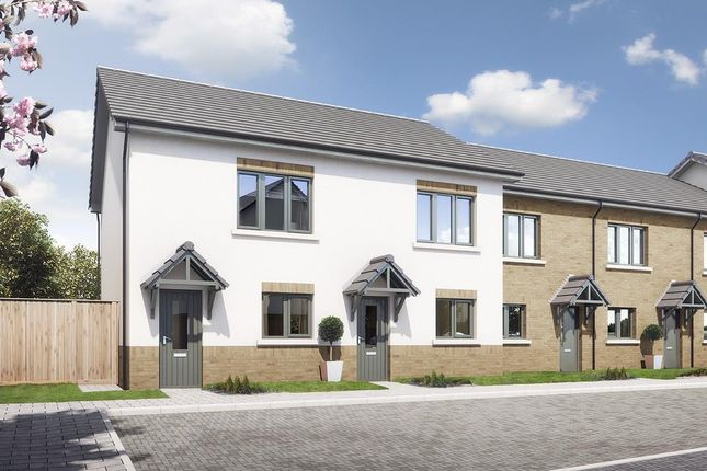 Thumbnail Mews house for sale in The Larch, 2 Bed Mews-Style, Oak Park, Peel
