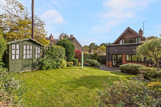 Rightmove Property To Rent In Hampshire