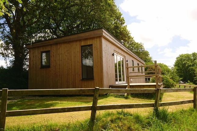 Thumbnail Lodge to rent in Beechwood, Woodfield, Colwith Farm, Treesmill, Par, Cornwall