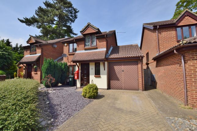 Thumbnail Detached house to rent in Northbrooke, Ashford, Kent