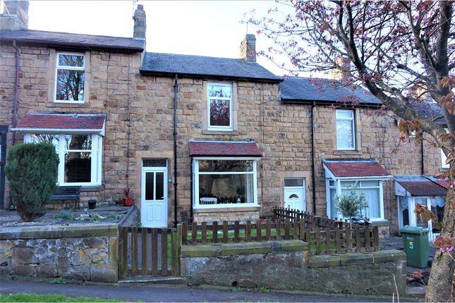 Thumbnail Terraced house for sale in Park Avenue, Blaydon-On-Tyne