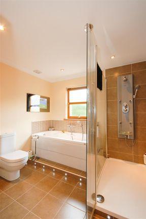 Downstairs Bath Vertical