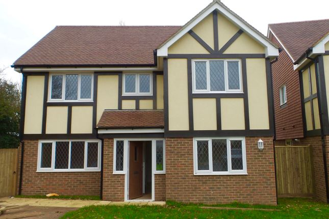 Thumbnail Detached house to rent in Paddock View, Horsebridge