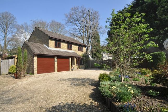 Thumbnail Detached house for sale in Ferniehurst, Camberley