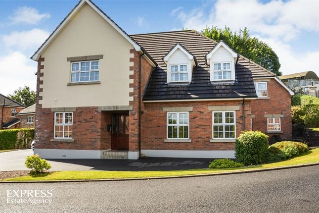Thumbnail Detached house for sale in Limetree Manor, Magherafelt, County Londonderry