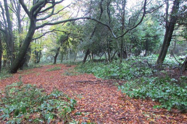 Thumbnail Land for sale in Leigh Lane, Bury