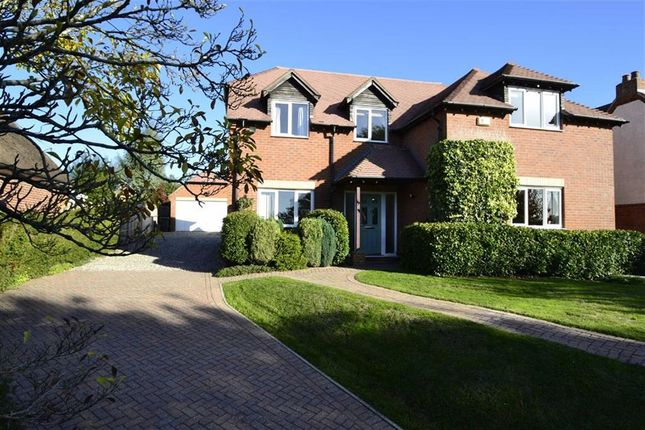 Thumbnail Detached house for sale in Park Lane, Thatcham, Berkshire