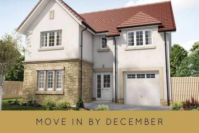 "Thumbnail Detached house for sale in ""The Cleland"" at Hillview Gardens, Nivensknowe Park, Loanhead"