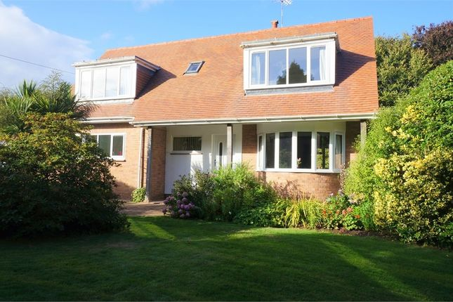 Thumbnail Detached house for sale in Copp Hill Lane, Budleigh Salterton