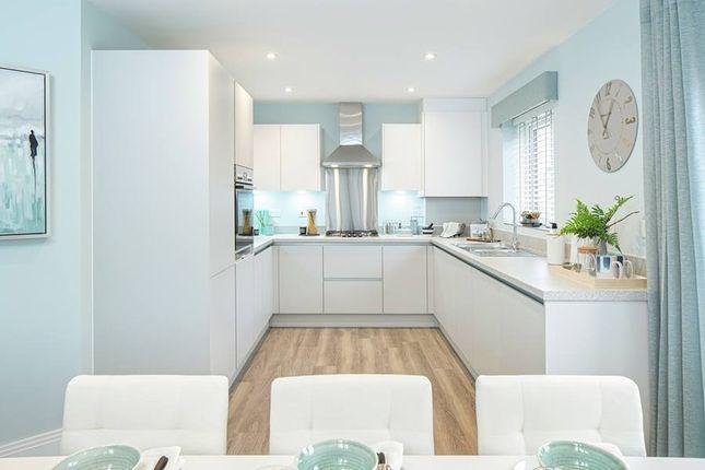 "Thumbnail Property for sale in ""The Oakham (Detached)"" at Jones Hill, Hampton Vale, Peterborough"