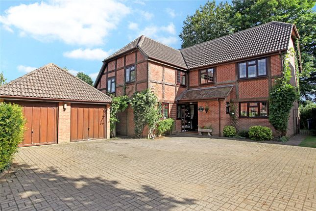 Thumbnail Detached house for sale in Birchanger, Busbridge, Godalming, Surrey