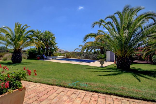 Beautiful Lawns To Pool Area