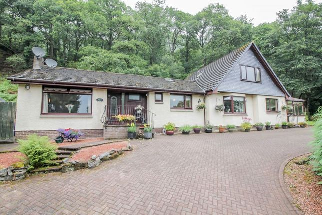 Blacketts Wood, Lochard Road, Aberfoyle FK8