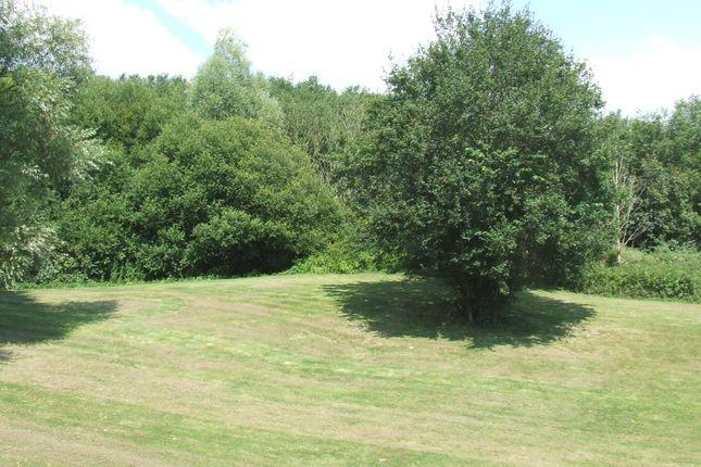 Communal Garden of Bishops Tawton, Barnstaple EX32
