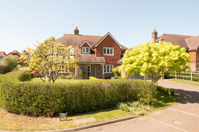 Thumbnail Detached house for sale in Farthings Walk, Horsham