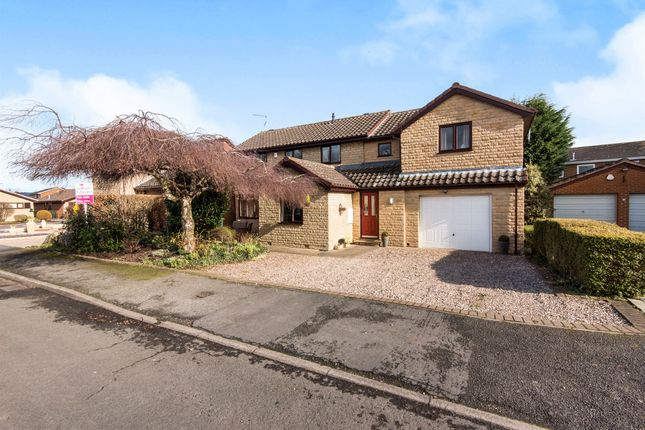 Thumbnail Detached house for sale in Herril Ings, Tickhill, Doncaster