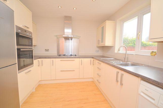 Thumbnail Bungalow to rent in Dorkins Way, Upminster