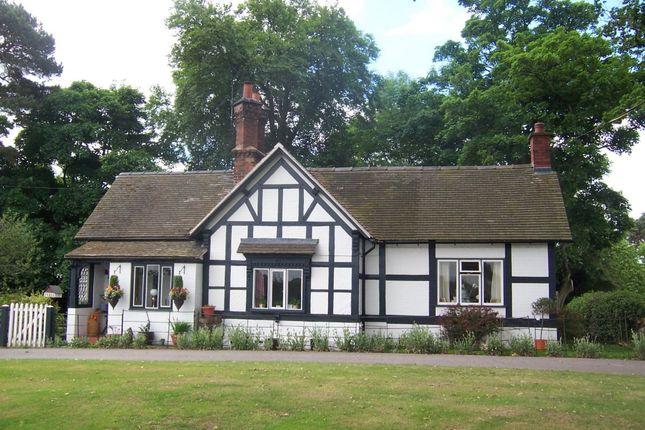 Thumbnail Detached house to rent in Oswestry Road, Overton, Wrexham
