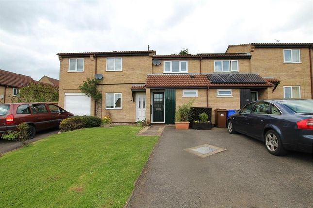 Thumbnail Town house to rent in Cottesmore Close, Burton-On-Trent, Staffordshire