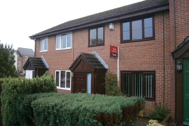 Thumbnail Terraced house to rent in Tyne Green, Hexham