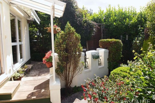 Thumbnail Semi-detached bungalow to rent in St Matthews Road, Chelston, Torquay