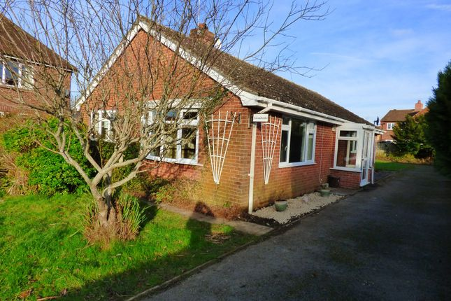 Thumbnail Detached bungalow to rent in The Street, Motcombe, Shaftesbury