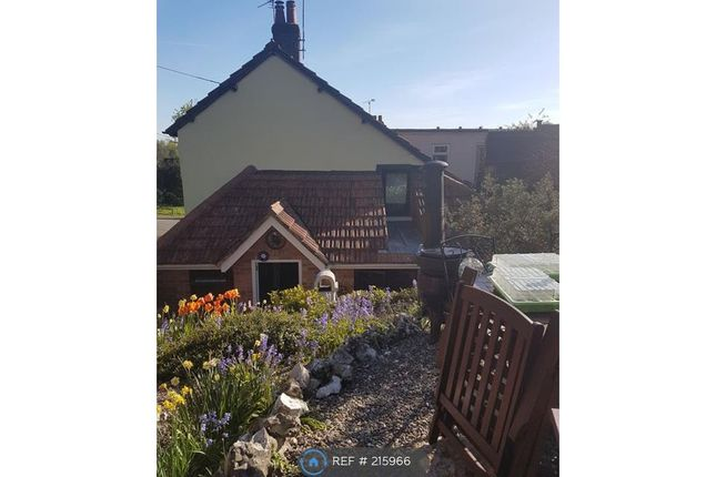 Thumbnail Semi-detached house to rent in Newbury Street, Whitchurch