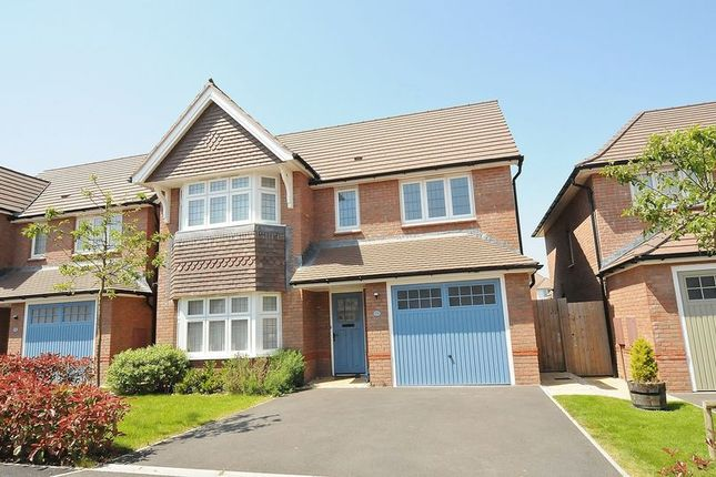 Thumbnail Detached house for sale in Murrayfield Close, Plymouth