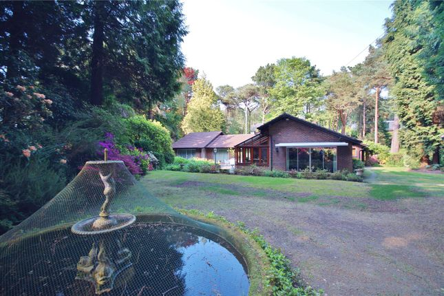 Thumbnail Detached bungalow for sale in Martello Road, Canford Cliffs, Poole, Dorset