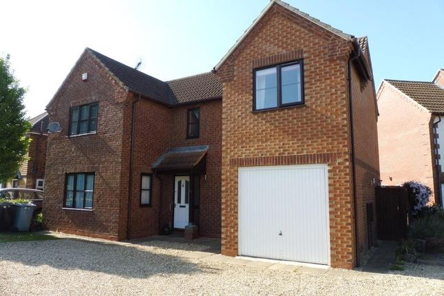 Thumbnail Detached house to rent in Aquila Way, Langtoft, Peterborough