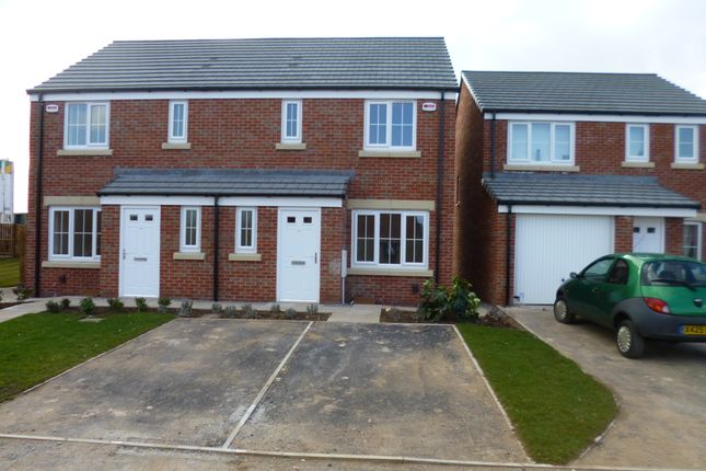 Thumbnail Semi-detached house to rent in Harvest Avenue, Thurcroft