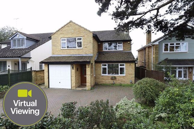 Thumbnail Detached house for sale in Lime Grove, Leighton Buzzard
